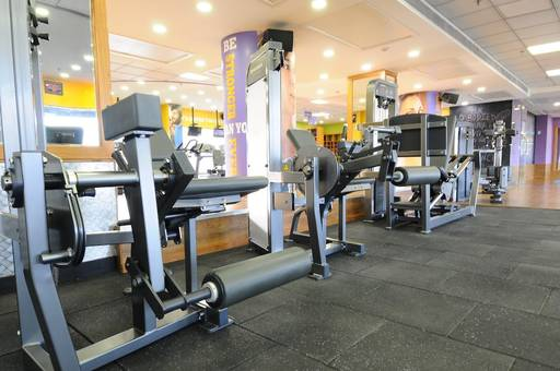 World gym fitness and health club membership official website