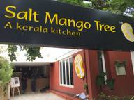 Store Images 2 of Salt Mango Tree